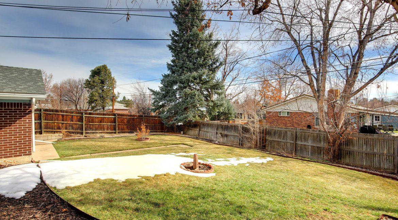 Backyard-5_MLS